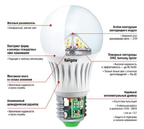 Лампочка в разрезе