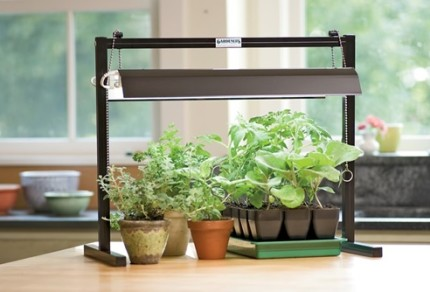 Как сделать рассеянный свет для растений - Gomdm.com