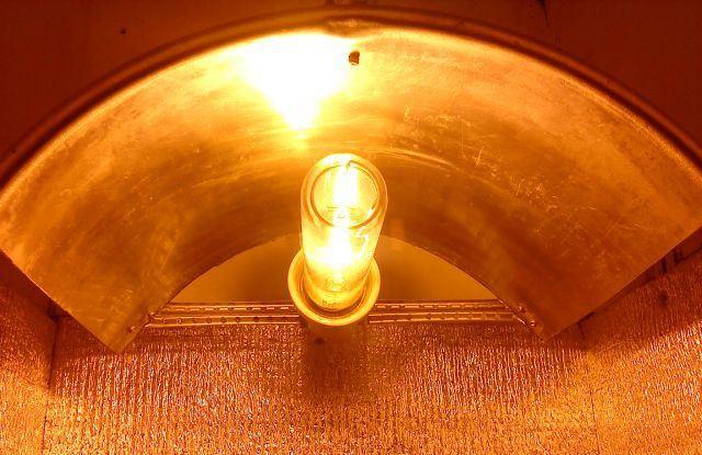 Своими руками рассеиватель для светильника