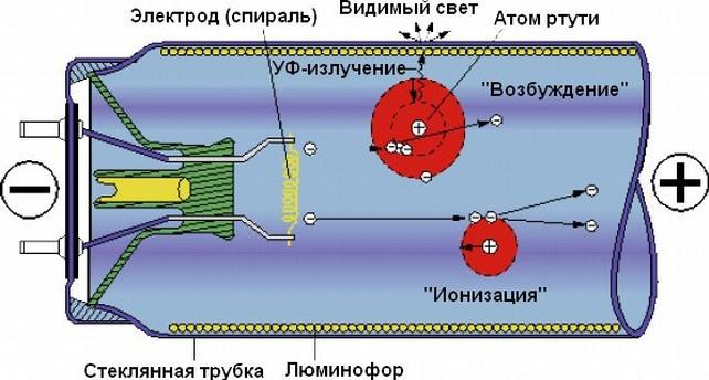 Схема действия КЛЛ